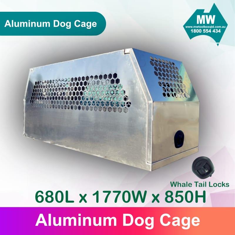 DOG Box 1