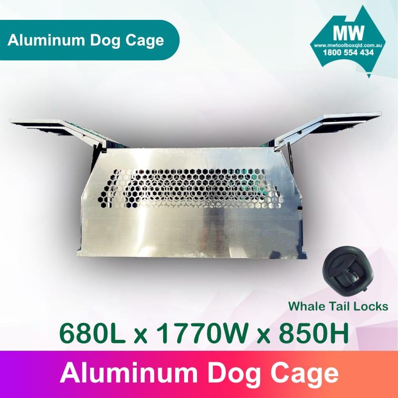 DOG Box 3