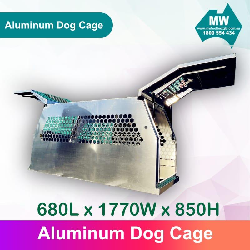DOG Box 4