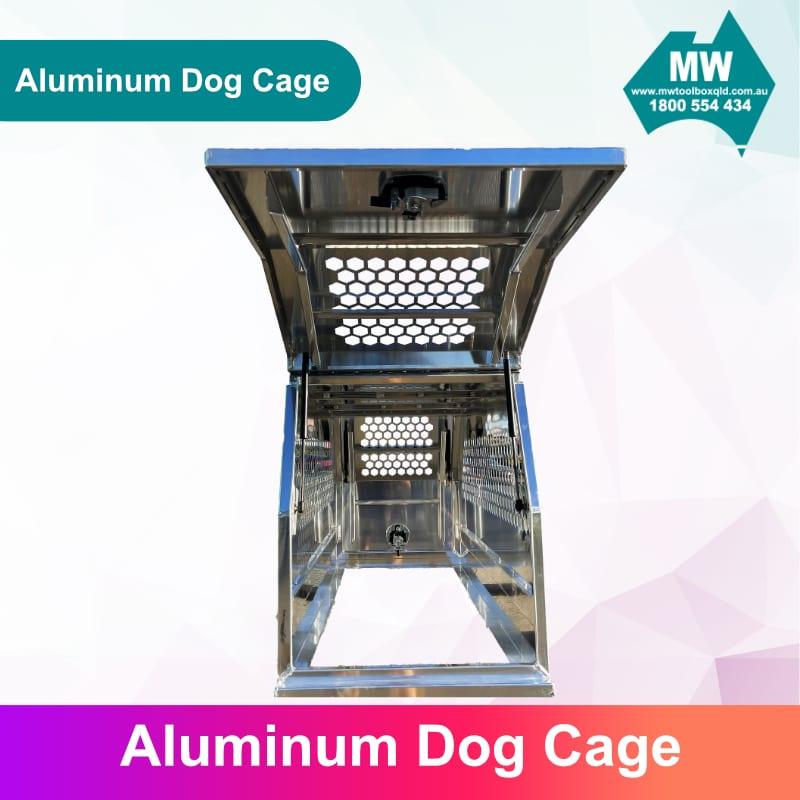 DOG Box 5