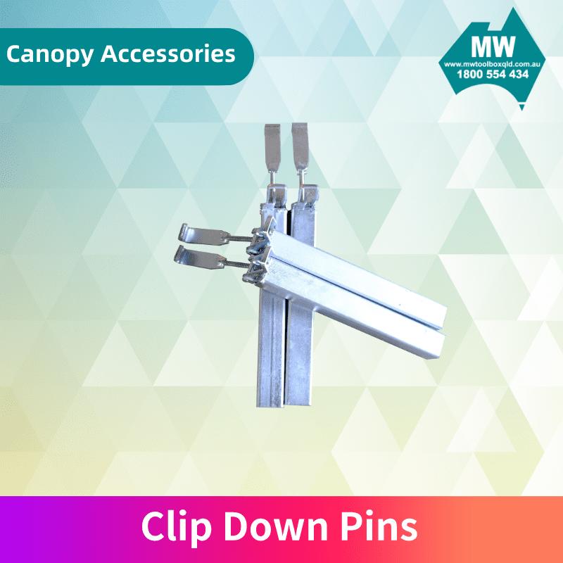 Clip Down Pins