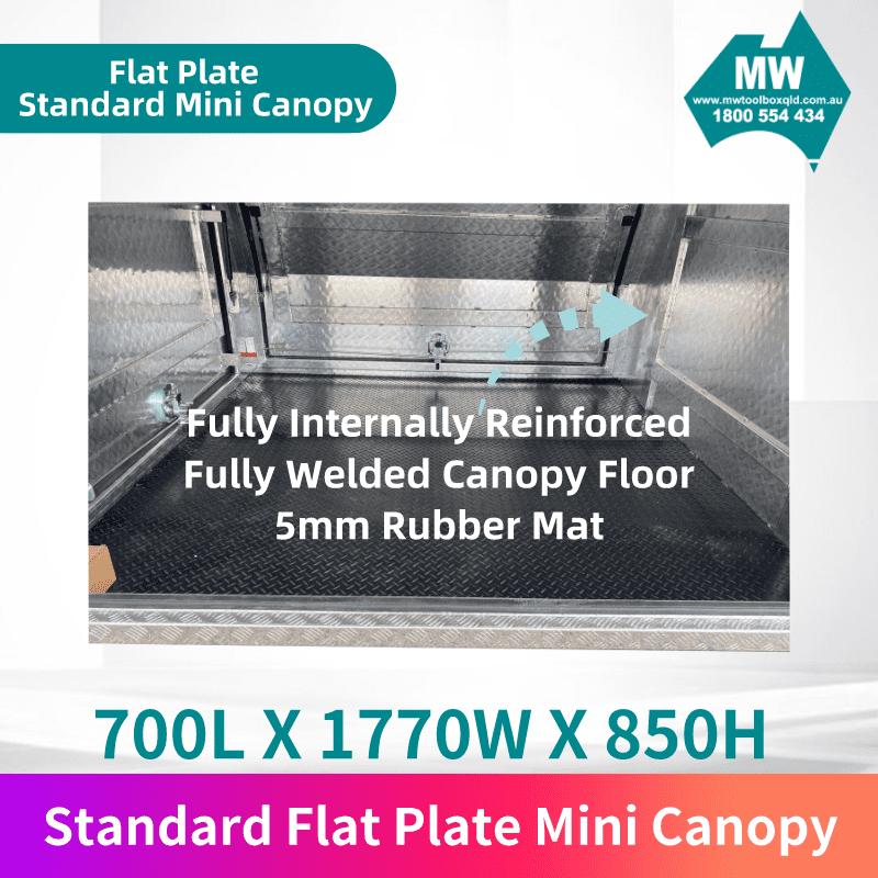 Flat plate mini canopy 3